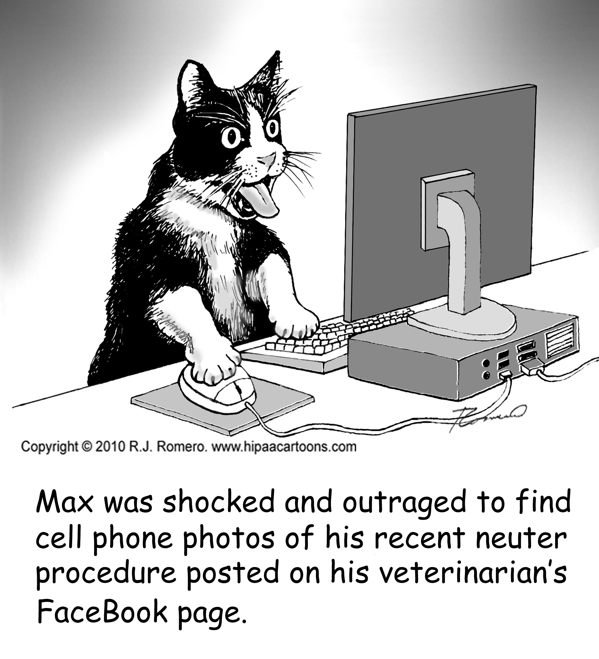 Data Security Cartoons — HIPAA Cartoons